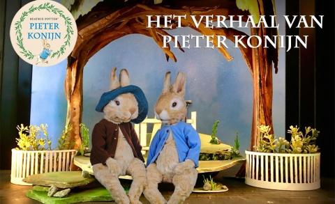 Het verhaal van Pieter Konijn