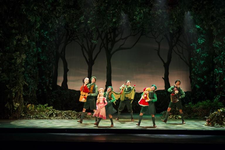 Efteling Theaterproducties De Sprookjesboom 3+